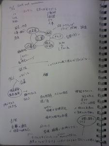 SN3C0052.jpg